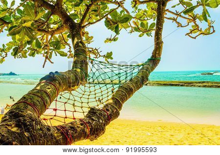 Exotic sandy beach hammock,  ocean and golden sand