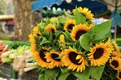 picture of sunflower  - Farmers market in France with vegetables and sunflowers.