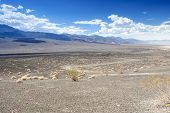 foto of cottonwood  - Ubehebe Crater in Death Valley National Park California - JPG