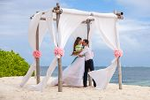 stock photo of wedding arch  - young loving couple on their wedding day beautiful wedding arch on beach outdoor beach wedding in tropics