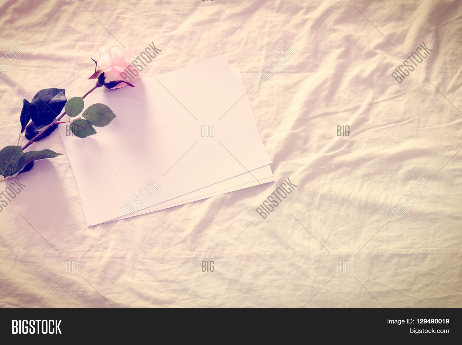 Rumpled bed sheet - Vintage Color Style Effect Blank Empty Papers With Artificial Pink Rose On A Crumpled