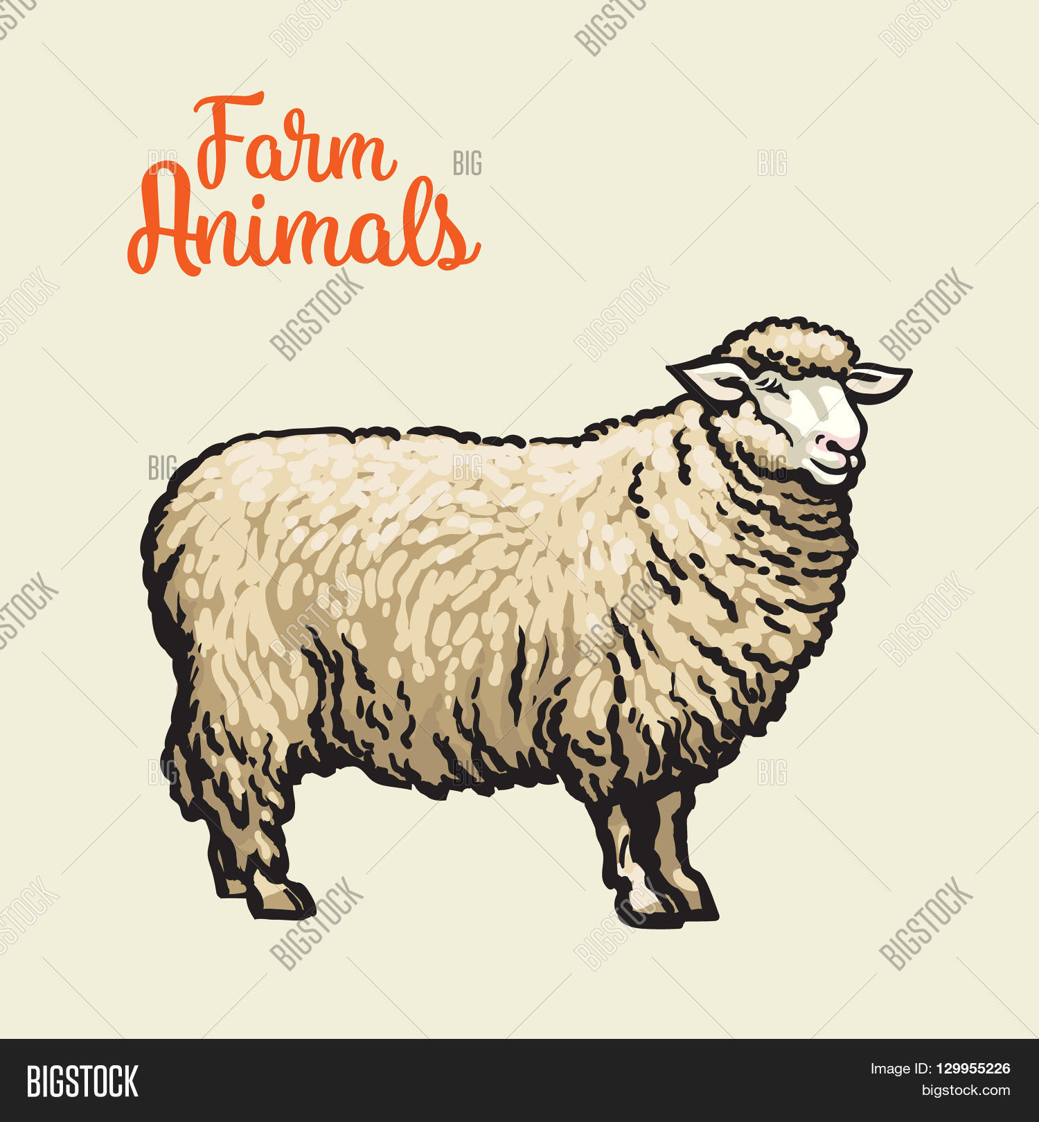 white sheep isolated sketch drawn by hand on a light background sheep farm animals