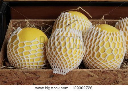 yellow cantaloupe in the market - asia fruit