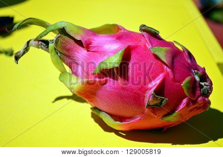 pink dragonfruit on a yellow background in sunlight