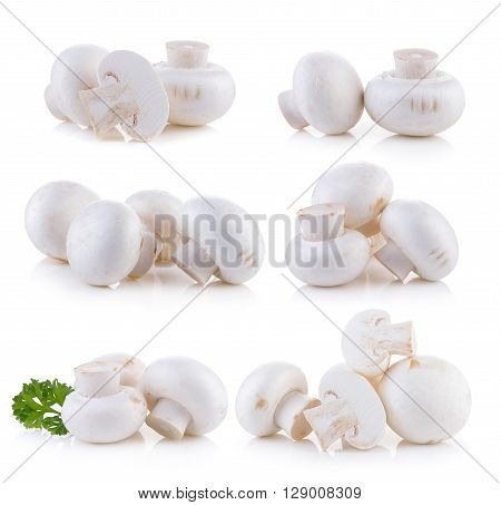 A Champignon mushroom on the white background