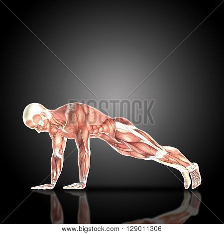 3D render of a medical figure bodybuilder with muscle map in a press up pose with arms straight