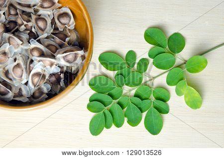 Moringa (Other names are Moringa oleifera Lam. MORINGACEAE Futaba kom hammer vegetable hum hum bug bug Hoo) leaf and seed