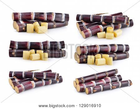 A sugarcane are on the white background
