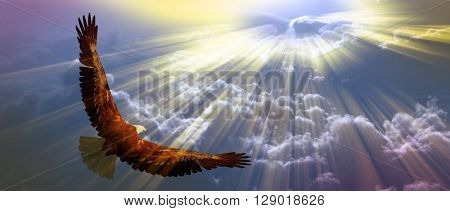 Eagle in flight above tyhe clouds 3D Render
