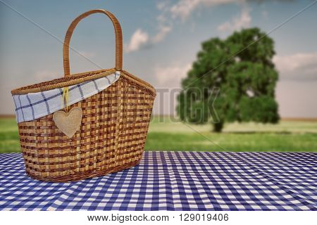 Picnic Basket On The Blue Checkered Tablecloth And Summer Landscape