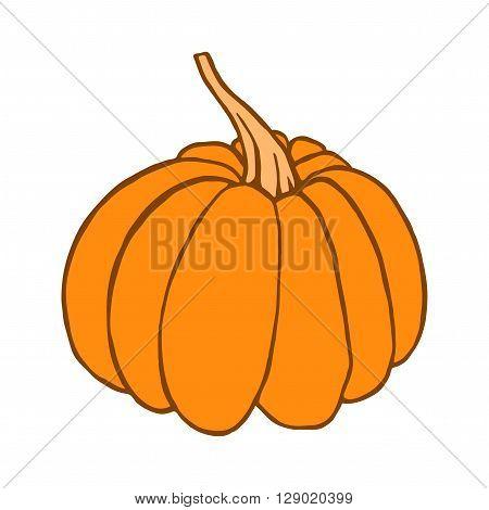 Pumpkin vector icon. Pumpkin on white background. Isolated orange pumpkin. Pumpkin design element for food label. Cute hand drawn pumpkin.