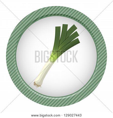 Vector illustration of single leek, white background