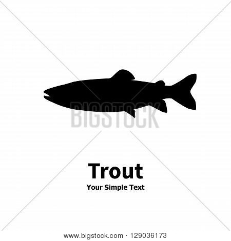Vector illustration silhouette of trout fish. Isolated taimen on a white background.