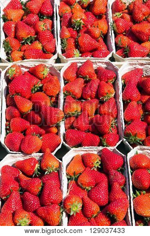 Fresh red strawberries for sale at a market
