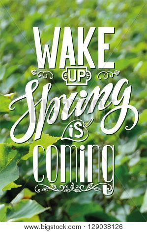 Spring design, Handwriting lettering, quotes.Vector Wake up Spring is coming.Green leaves nature blurred bckground.Spring season, springtime wallpaper, text.Web and art. Calligraphic Retro Illustration.Vertical