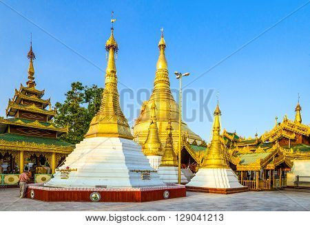 Yangon Myanmar - January 9 2012: The golden stupas of the Swedagon Pagoda.
