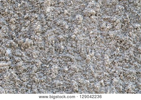Closeup surface old and dirty concrete wall background