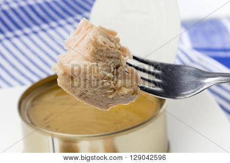 piece of canned tuna in olive oil just for eating. As a background one tuna can open over a napkin white with blue bars