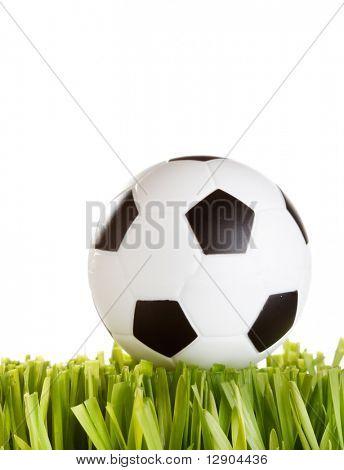 Football on the grass
