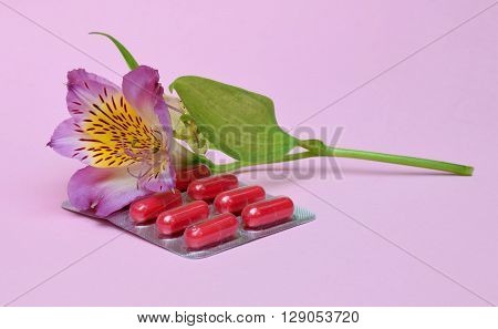 Flower astromelii and tablets from allergies. Journey. Climate Change. Spring season. The beauty of nature and the preservation of health.