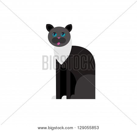 Vector flat cat. Vector detailed cat Isolated on white. Vector detailed cat poster. Cute cat vector background.  Vector cat.