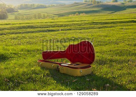 Guitar In Case On Grass