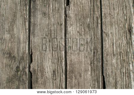 Wooden panel of old weathered oak boards closeup as background