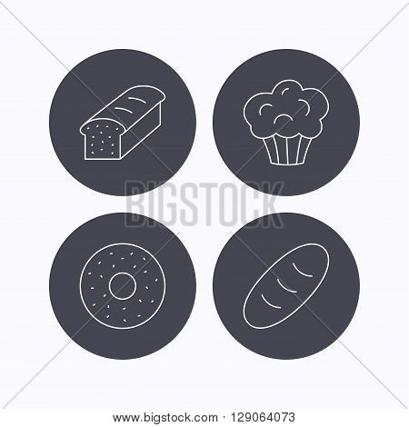 Muffin, donut and toast bread icons. Fresh bread linear signs. Flat icons in circle buttons on white background. Vector