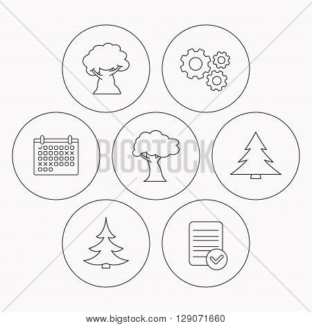 Tree, oak-tree and christmas tree icons. Forest trees linear signs. Check file, calendar and cogwheel icons. Vector