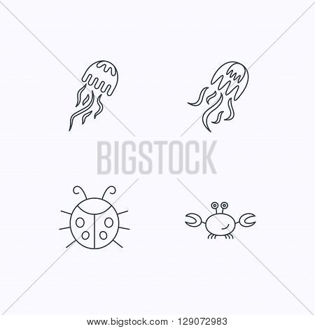 Jellyfish, crab and ladybug icons. Ladybird linear sign. Flat linear icons on white background. Vector