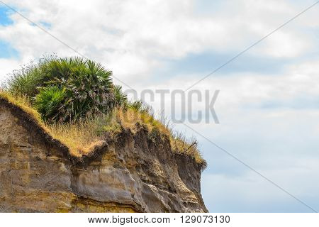 sedimentary rock with plants and cloudly blue sky