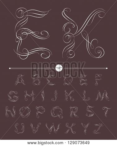 Calligraphic alphabet. Design elements can be used for invitation, congratulation. Digital illustration