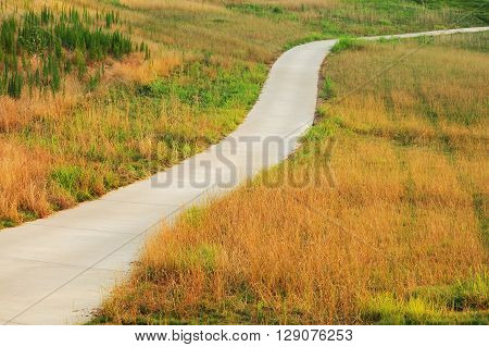 trail extending in autumn wild grass area