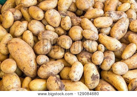 Fresh potatoes for sale at a market