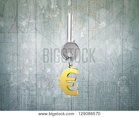 Silver key with golden euro sign shape keyring on doodles wooden wall background. 3D Rendering