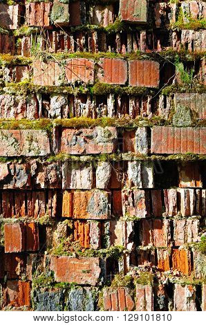 Textured natural stone background - old cracked brickwork made of red brick and partly covered with green moss and vegetation