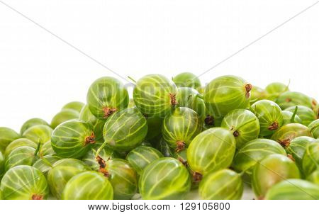 gooseberries isolated on a white backgroundgarden, rich