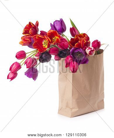 tulips in a paper bag on a white background