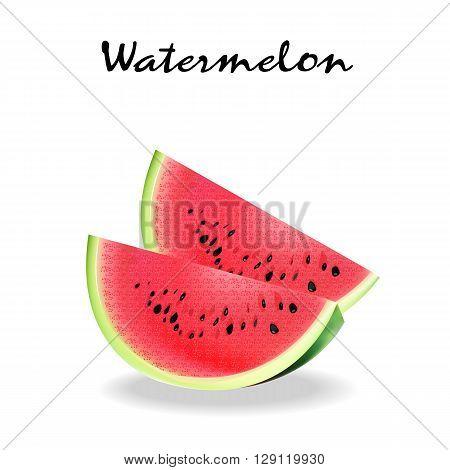 Watermelon vector illustration. ripe watermelon slice icon