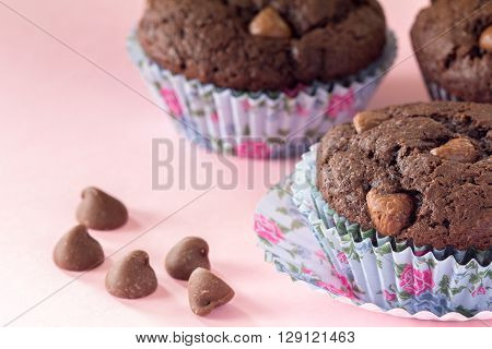 Chocolate Chip Muffins on Pink with Floral Muffin Cups Selective Focus