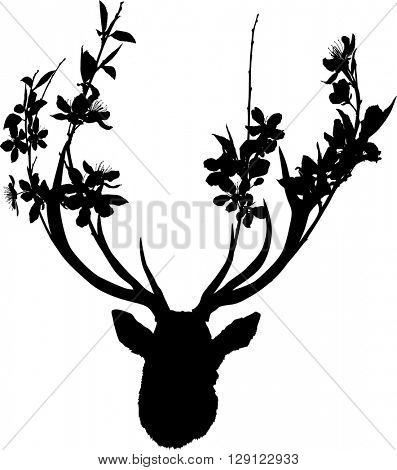 illustration with deer head with blossoming tree branches between antlers isolated on white background
