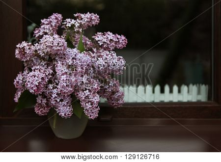a very nice beautiful lilac flowers lilac