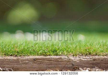 Edge of a neat lawn with blades of grass in foreground