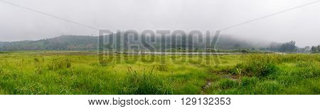 Panorama of swamp lake on fog and mountain background