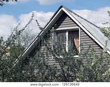 The roof of the house, blue sky, flowering trees. The window in the attic