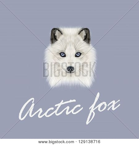 Vector Illustrated Portrait of Arctic fox. Cute white fluffy face of Polar Fox on dark blue background.