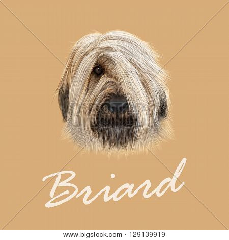Vector Illustrated Portrait of Briard dog. Cute face of fluffy dog on tan background