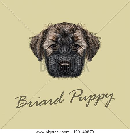 Vector Illustrated Portrait of Briard puppy. Cute face of fluffy dog on tan background