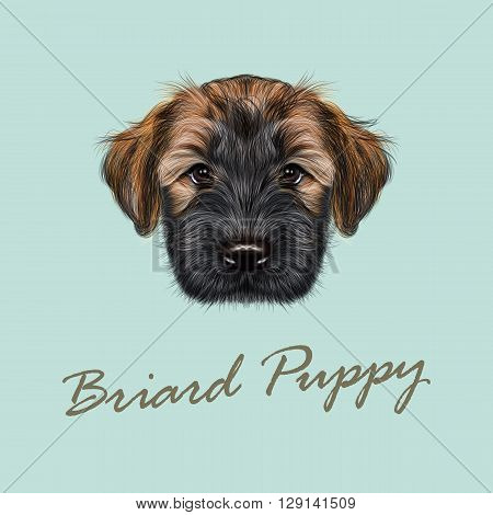 llustrated Portrait of Briard puppy. Cute face of fluffy dog on blue background