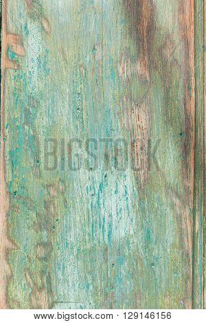 Old wooden door background. Texture in green tones.